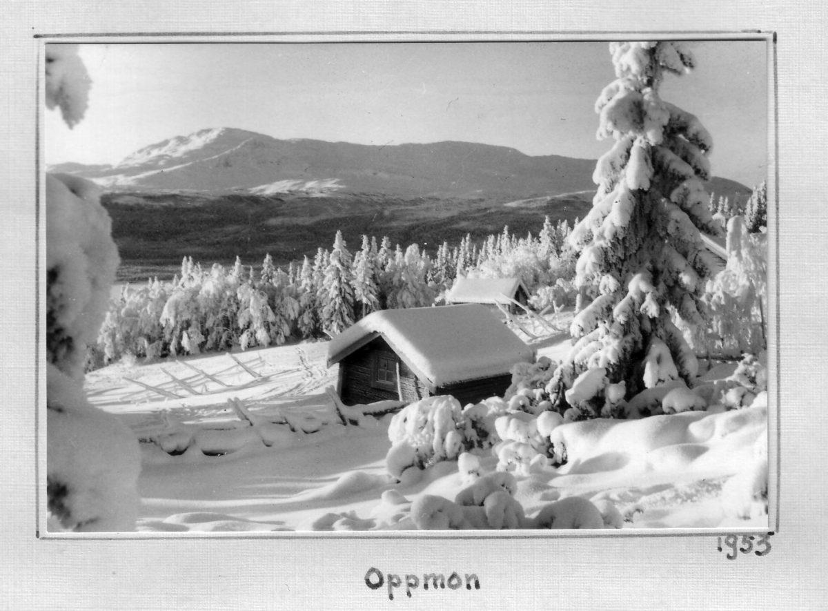 S.11 Oppmon 1953