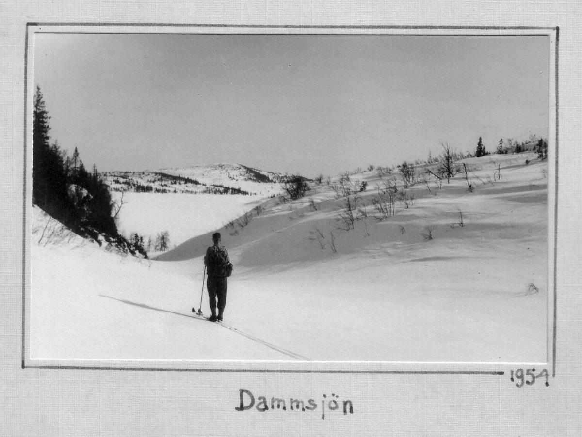 S.14 Dammsjön 1954