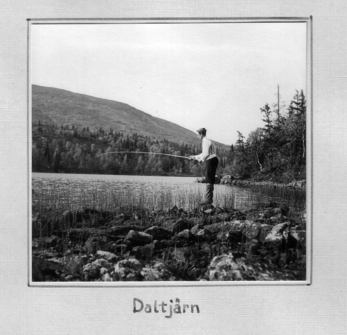 S.17 Daltjärn