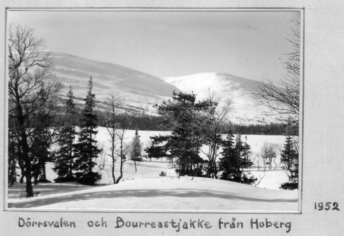 S.26 Hoberg 1952