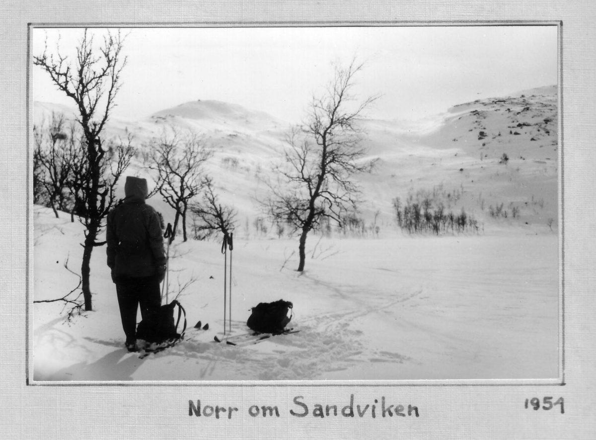 S.28 Norr om Sandviken 1954