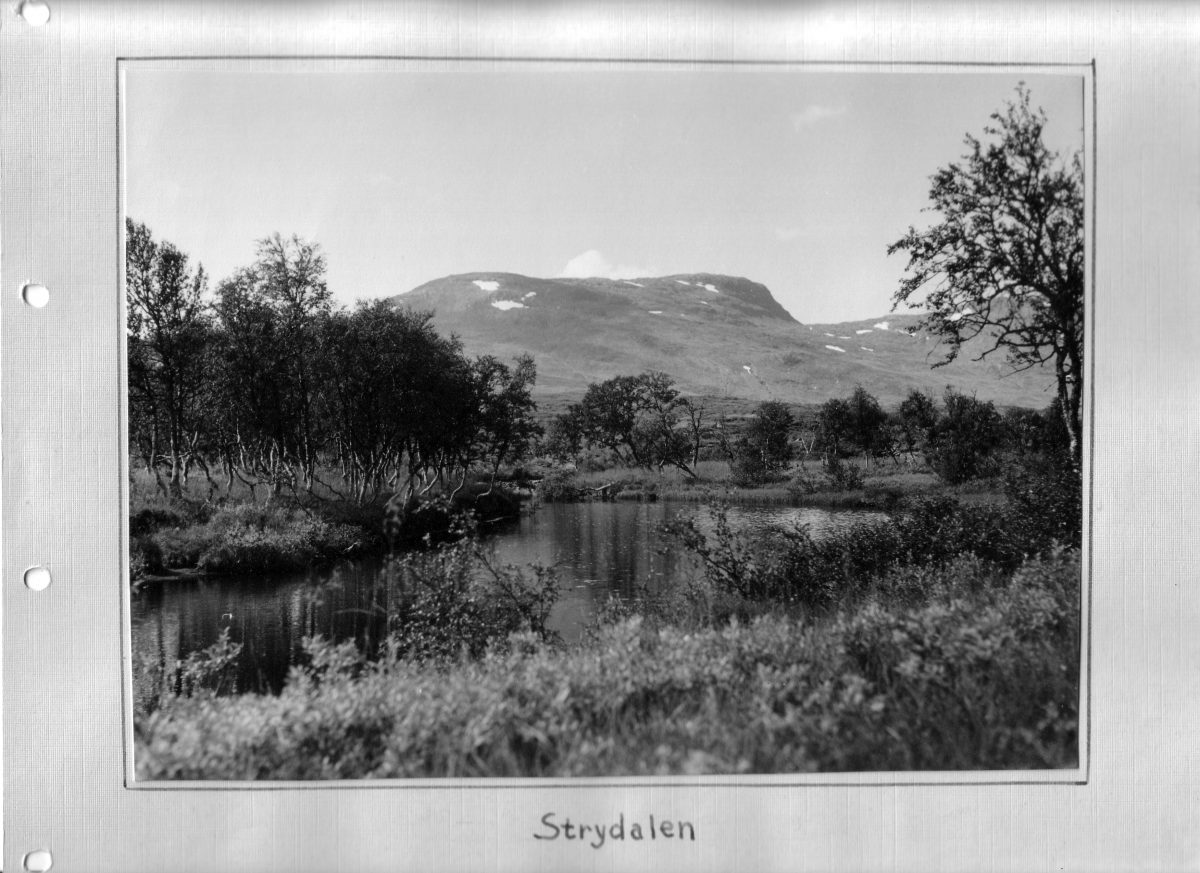 S.36 Strydalen Bild 1