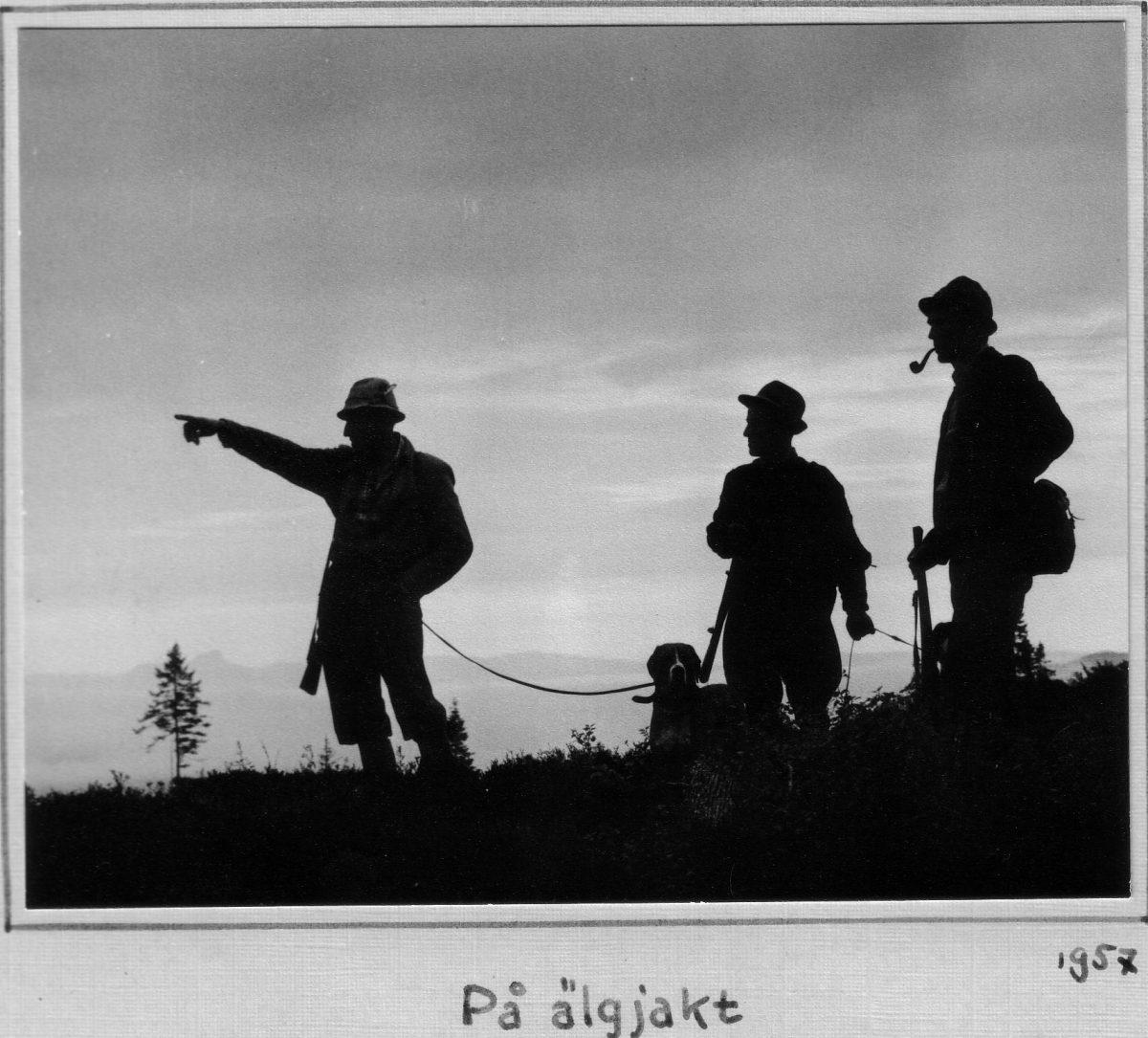 S.41 På älgjakt 1957