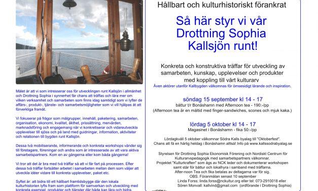 Utvecklingsmöte Drottning Sophia 15 sept